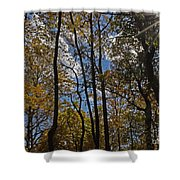 Little Round Top Trees Shower Curtain
