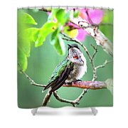 Little Ruby  - 5x7 Card Shower Curtain