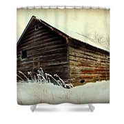 Little Shed Shower Curtain by Julie Hamilton
