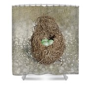 Little Treasures Shower Curtain