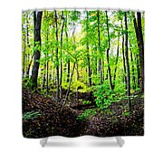 Little Valley 3 Shower Curtain