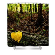 Little Valley 4 Shower Curtain