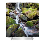 Little Waterfall In Marlay Park Shower Curtain