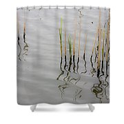 Little Waves Shower Curtain