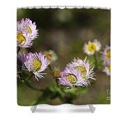 Little Wild Flowers Shower Curtain