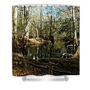 Little Withlacoochee River Shower Curtain