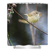 Little Yellow Bird In The Glades Shower Curtain