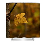 Little Yellow Leaf Shower Curtain