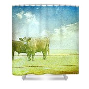 Live Stock Shower Curtain