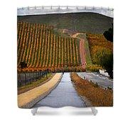 Livermore Vineyard 2 Shower Curtain