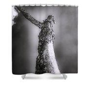 Living Dead Tree - Spooky - Eerie Shower Curtain