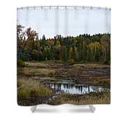 Living Fall Shower Curtain