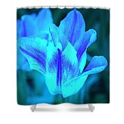 Living Glow Shower Curtain