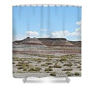 Living History Shower Curtain