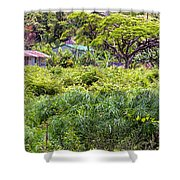 Living Off The Grid In The Waipi'o Valley Shower Curtain