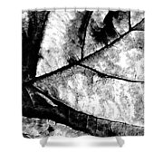 Living Structure I Shower Curtain