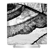 Living Structure IIi Shower Curtain