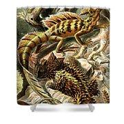 Lizard Detail II Shower Curtain