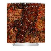 Lizard In Red Nature - Elena Yakubovich Shower Curtain by Elena Yakubovich