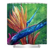 Lizard On Bird Of Paradise Shower Curtain