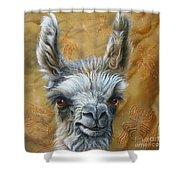 Llama Baby Shower Curtain by Jurek Zamoyski