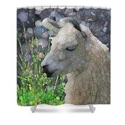 Llama Shower Curtain by Jack Zulli