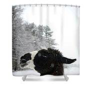 Llama Profile In Snowfall, Maine, New Shower Curtain