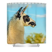 Llama Profile Shower Curtain