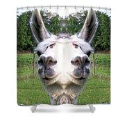Llama  Fun Head Games Shower Curtain