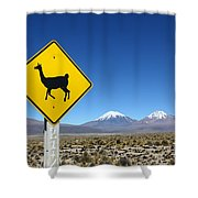 Llamas Crossing Sign Shower Curtain
