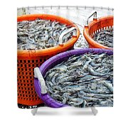 Loaves And Fishes Shower Curtain