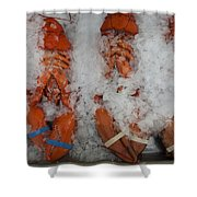 Lobster At Woodman's Shower Curtain