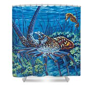 Lobster Season Shower Curtain