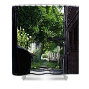 Locke Chinatown Series - Alley With Trees - 5 Shower Curtain
