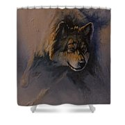 Locked On Target Shower Curtain by Mia DeLode