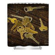 Locksmith - Rejected Keys Shower Curtain