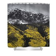 Lofty Ambition Shower Curtain