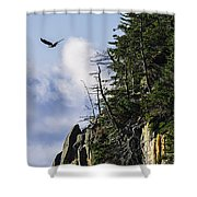 Lofty Bald Eagle Surveys Maines Bold Coast Shower Curtain