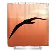 Lofty Shower Curtain