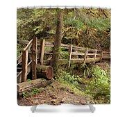Log Bridge In The Rainforest Shower Curtain