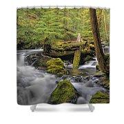 Log Jam Shower Curtain