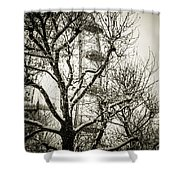 London Eye Through Snowy Trees Shower Curtain