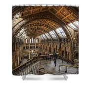 London Natural History Museum Shower Curtain