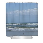 Lone Bird Walking Shower Curtain