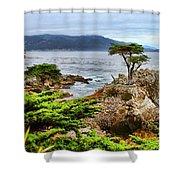 Lone Cypress By Diana Sainz Shower Curtain