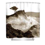 Lone Cypress Tree On  Midway Point Pebble Beach California Circa 1916 Shower Curtain