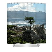 Lone Cyprus 1045 Shower Curtain