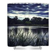 Lone Duck At Dusk Shower Curtain