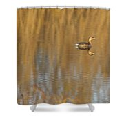 Lone Grebe Shower Curtain