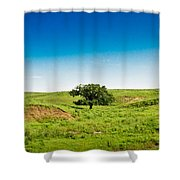 Lone Green Tree Shower Curtain